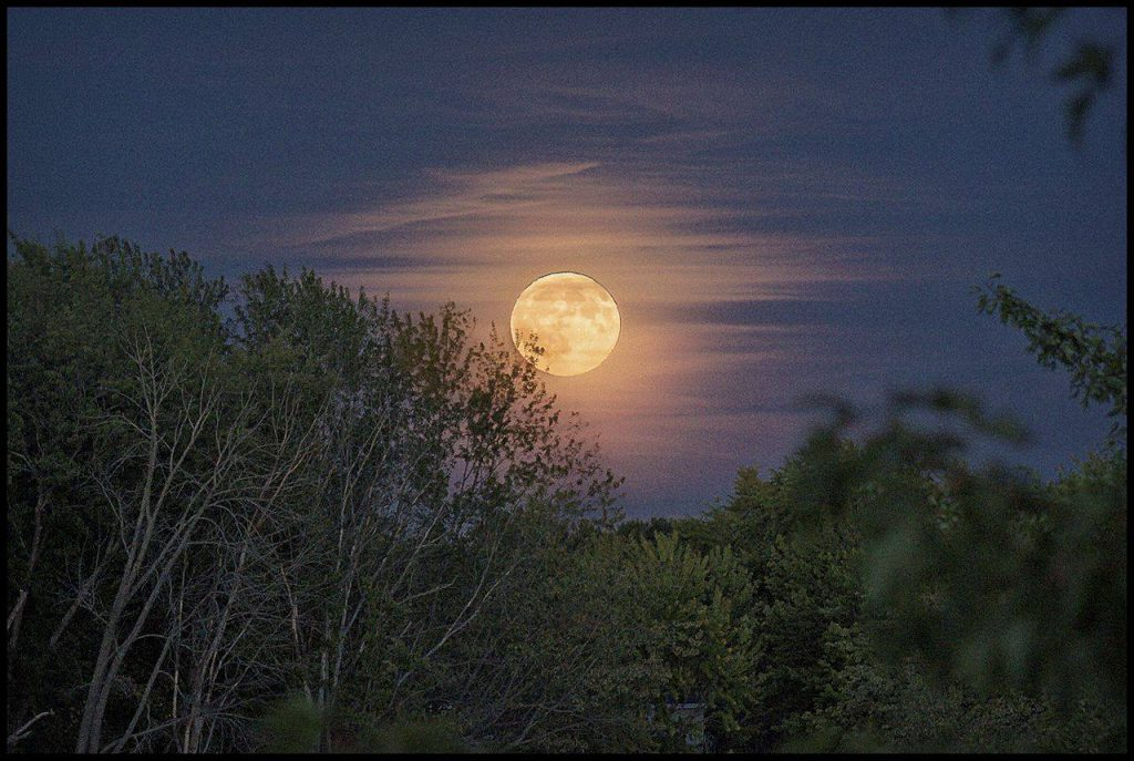 harvest moon over orono, maine