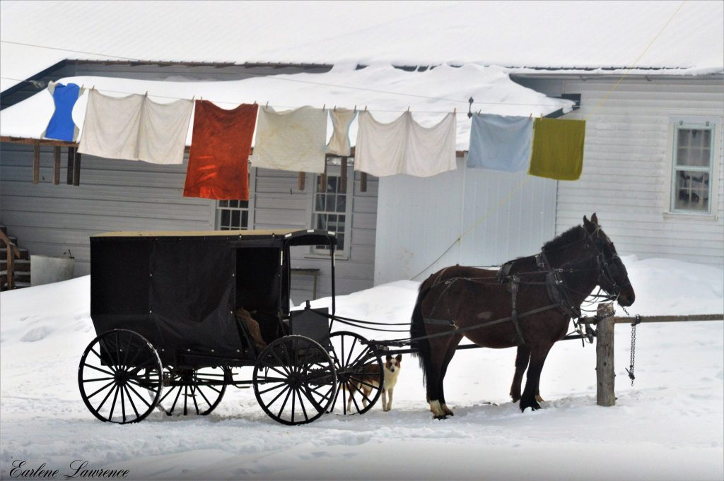 Amish Laundry Hanging out to Dry