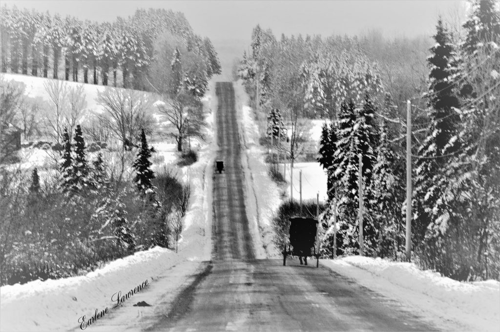 Amish Traffic (Photo Credit: Earlene Dyer Lawrence)