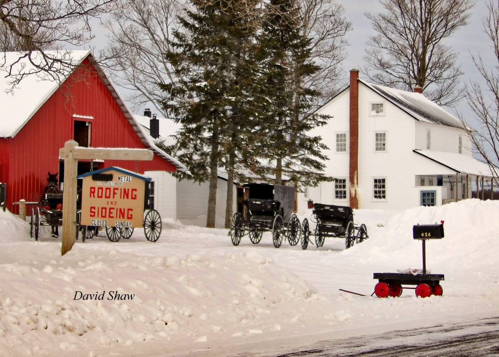 Amish Roofing & SIding Business (photo credit: David Shaw)